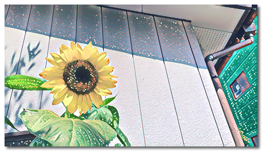 DropShadow ~ ごしごし1.jpg
